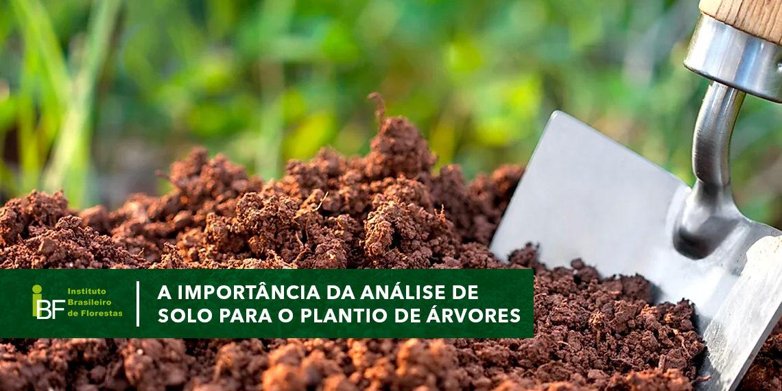 A importância da análise de solo para o plantio de florestas
