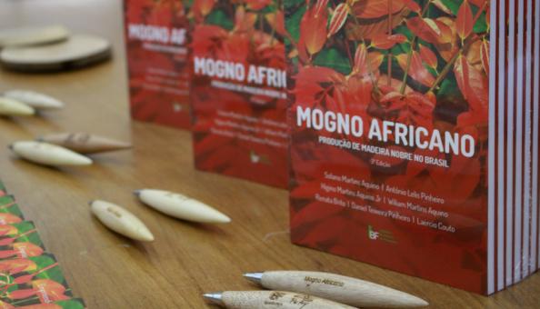 Livro Mogno Africano